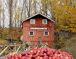 Busti Cider Mill