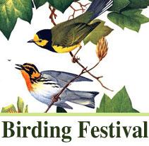 roger tory peterson institute birding fest