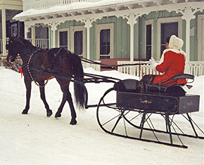 Currier & Ives Sleigh Rally