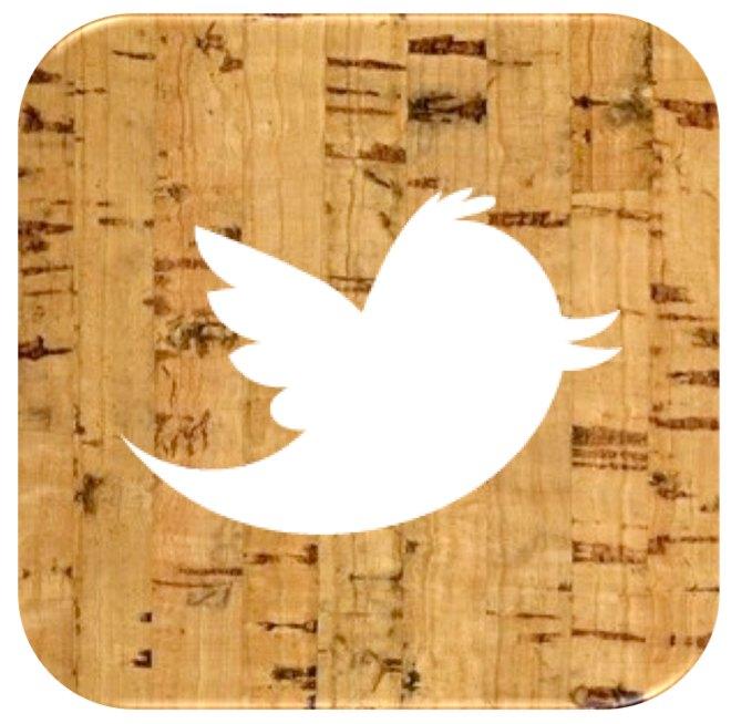 SDBWFF Twitter