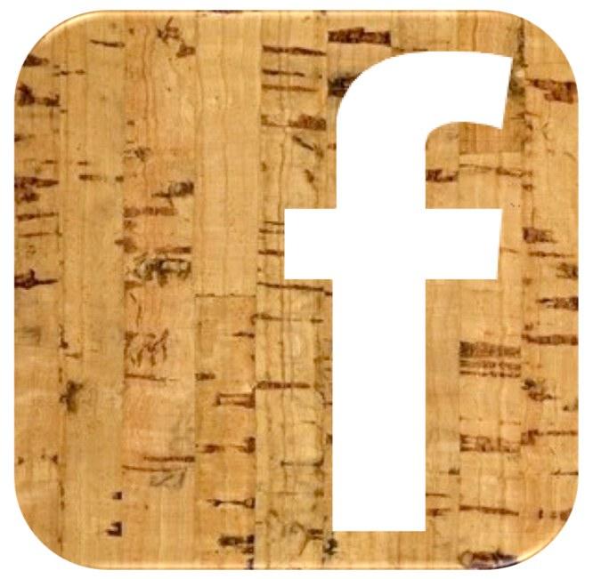 SDBWFF Facebook