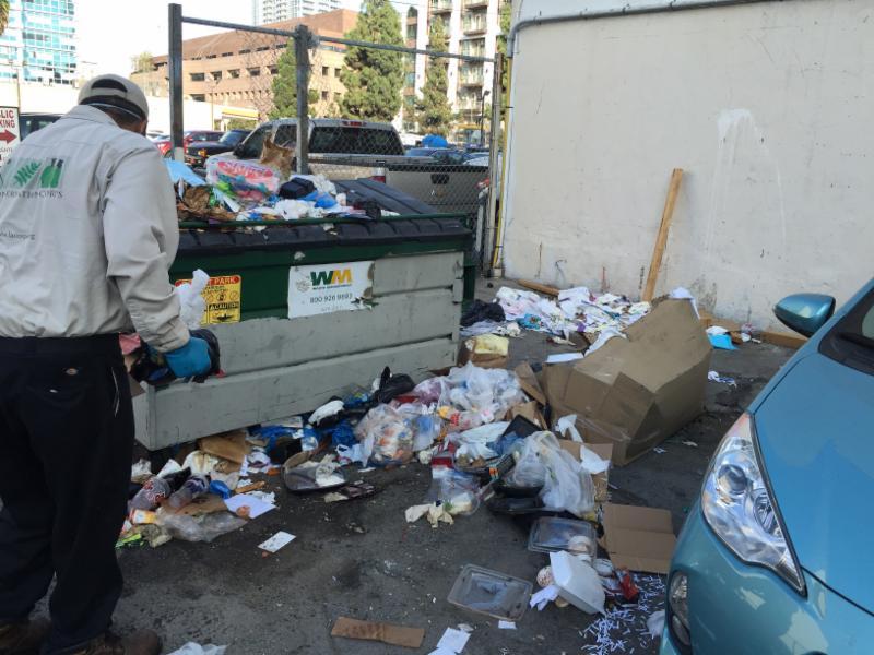 anti alley dumping