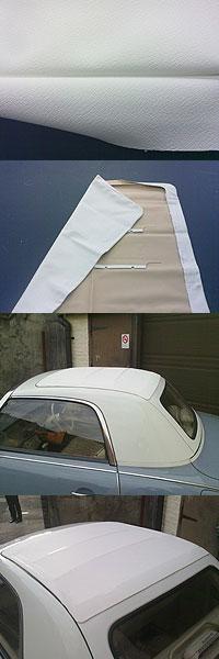 europian roof