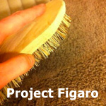 project figaro small
