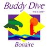 BuddyDive-100