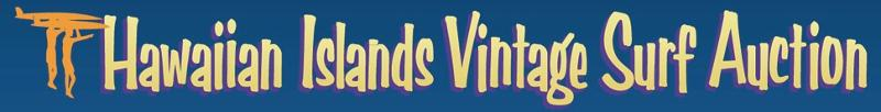 HIVSA banner