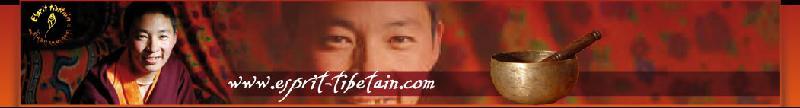 Bannière Esprit tibetain