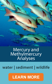 Mercury and Methylmercury Analyses