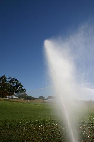 Sprinkler image