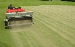 Topdressing as a cover for winter greens