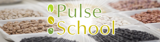 PulseSchool email header