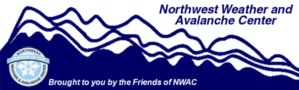 Friends of nwac update publicscrutiny Image collections