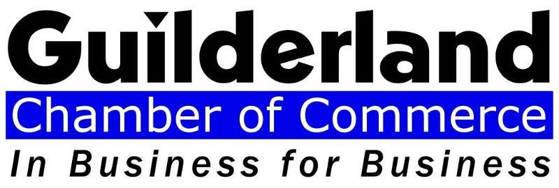Image result for guilderland chamber of commerce