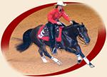 image of horse & rider