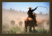 Cattle Drive Picture