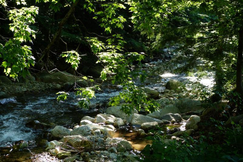 Roaring Brook, Wallingford VT