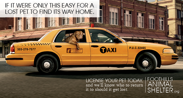 License your pet today!