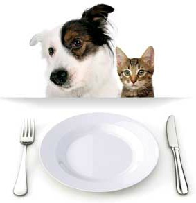 Dog and Cat with empty dish