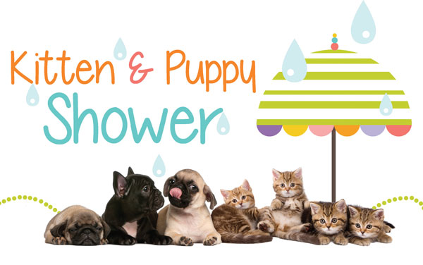 Kitten and Puppy Shower