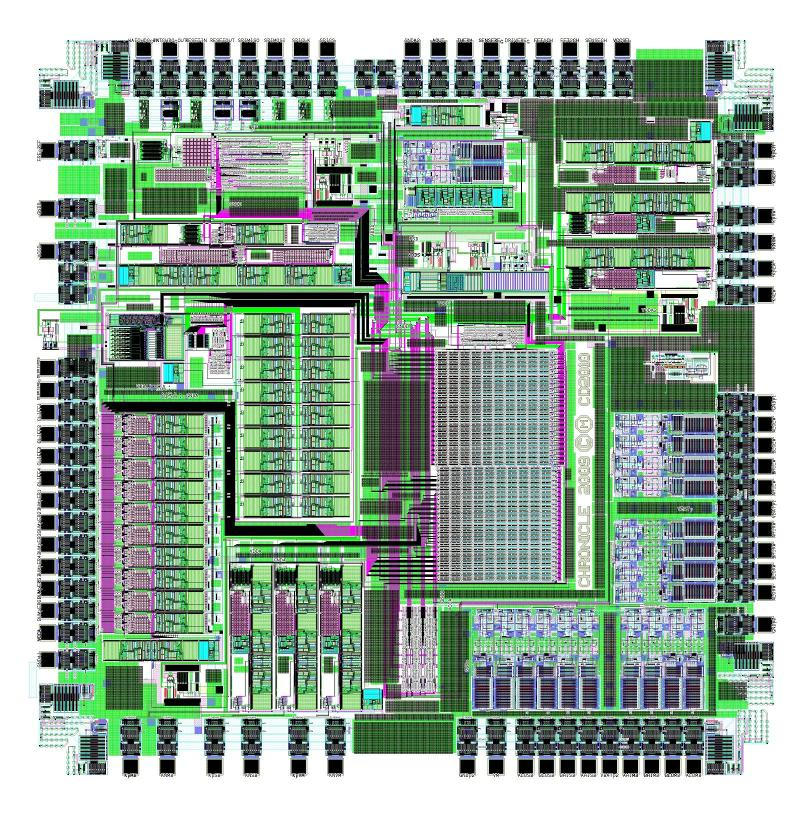 Chronicle Chip Photo