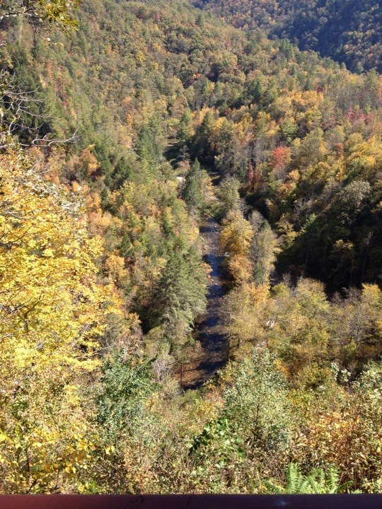 overlooking fall-decorated ravine and French Broad River