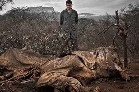 Yao Ming with poached elephant