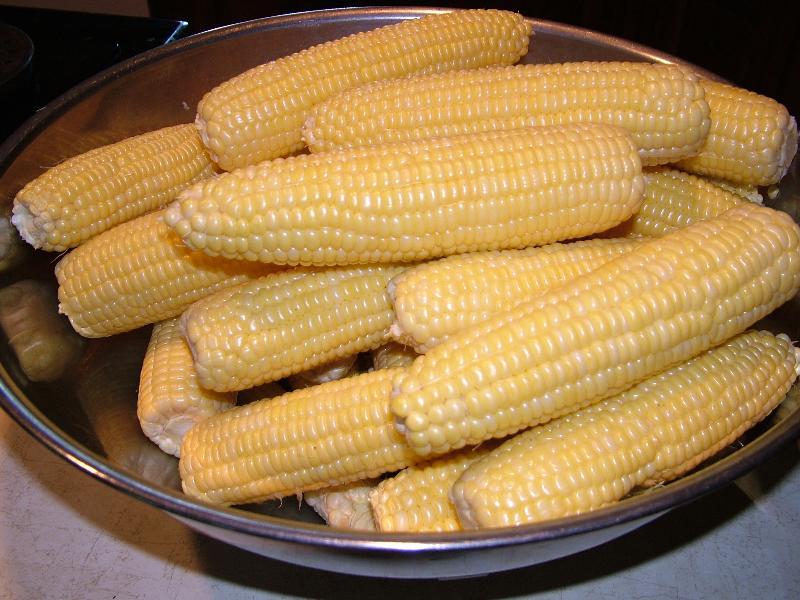 Bodacious Corn