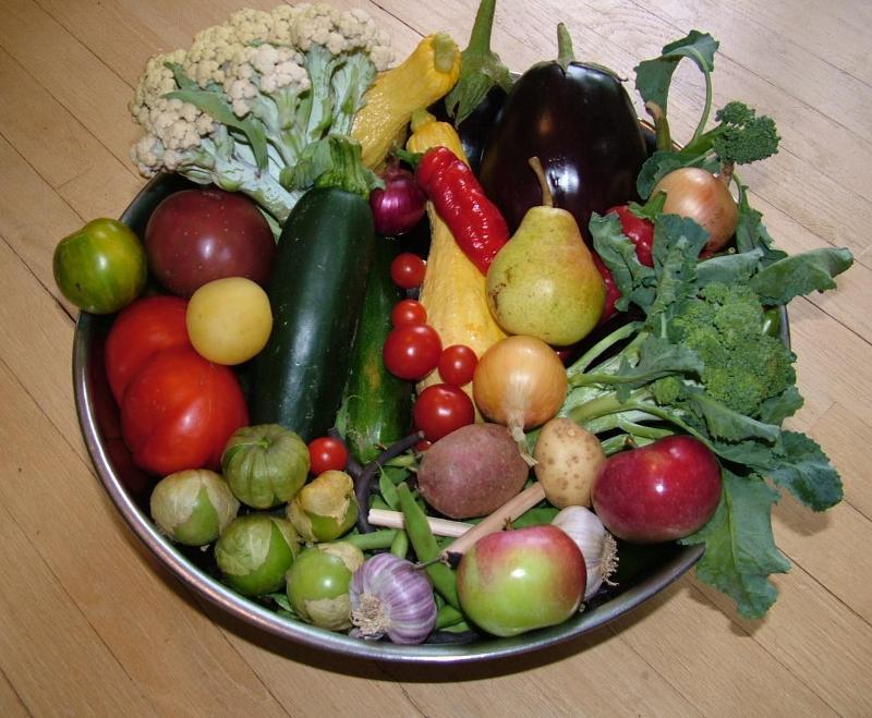 August Harvest from Noel's Garden
