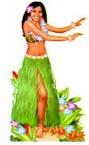 Hawaiian graphic