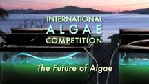 Future of Algae 3