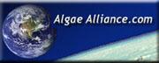 AlgaeAlliance