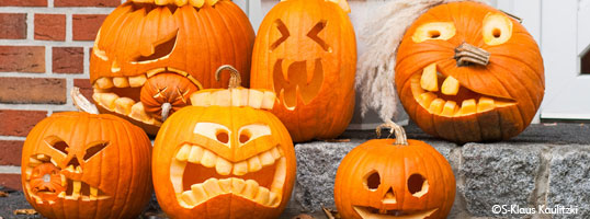 Beautyterm LLC wishes you a HAPPY HALLOWEEN!