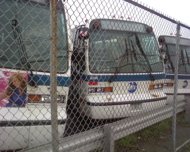 LI Bus