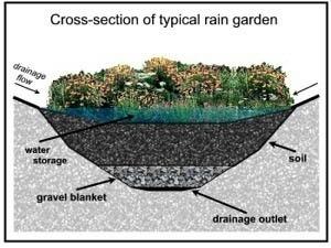 694 best Green Infrastructure images on Pinterest Rain garden