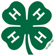 4-H green clover