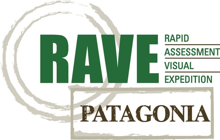 patagonia rave
