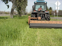 high weed mowing