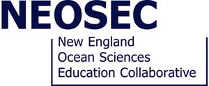 NEOSEC logo