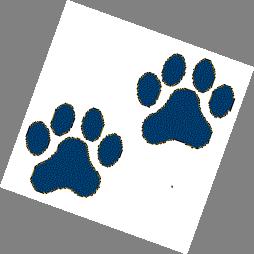 Wildcats Paw Logo