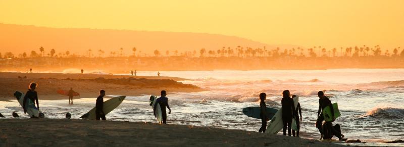 surfing landscape 3