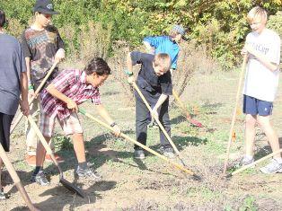 Grade 7 Native Garden