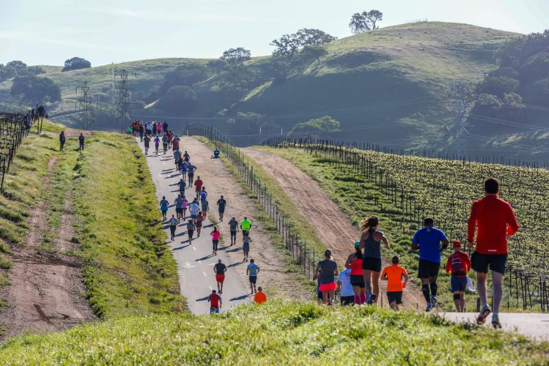 Livermore Half Marathon - 3-26-16 - Larry Rosa