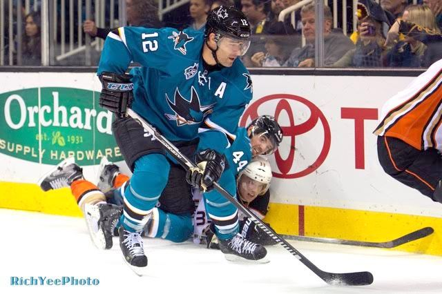 San Jose Sharks - 11-7-15 - Rich Yee