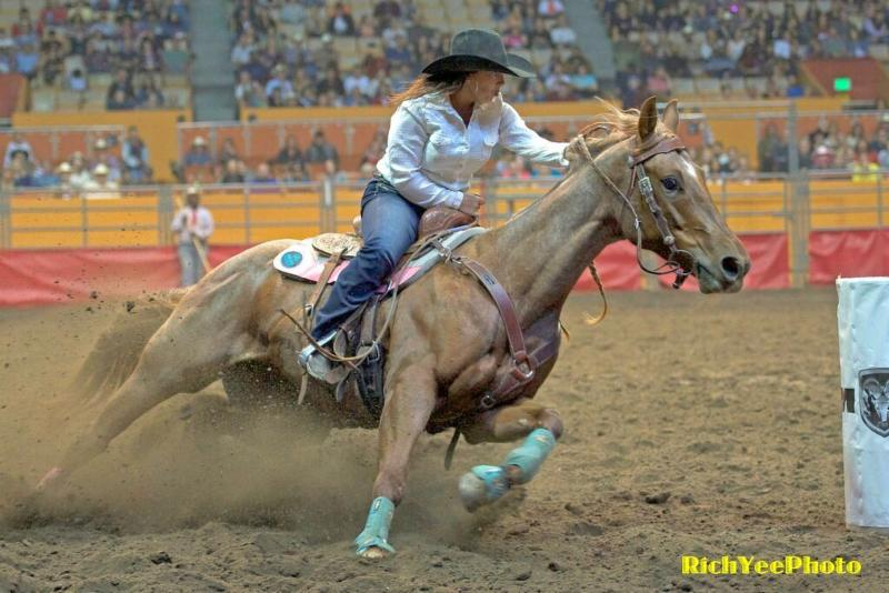 Grand National Rodeo - 10-25-15 - Rich Yee