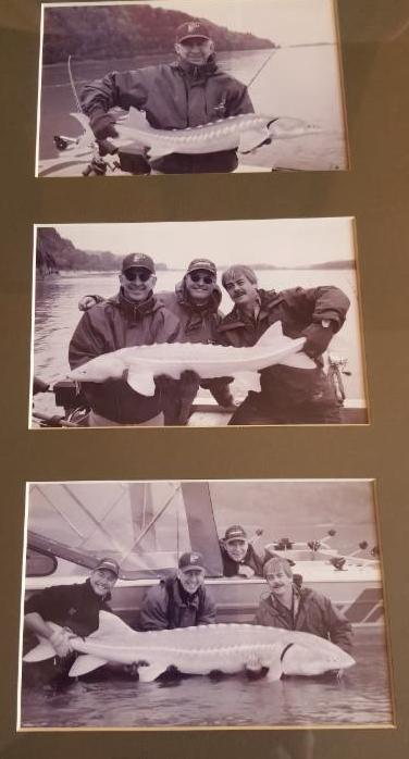 Andy - three fish frames - 9-15