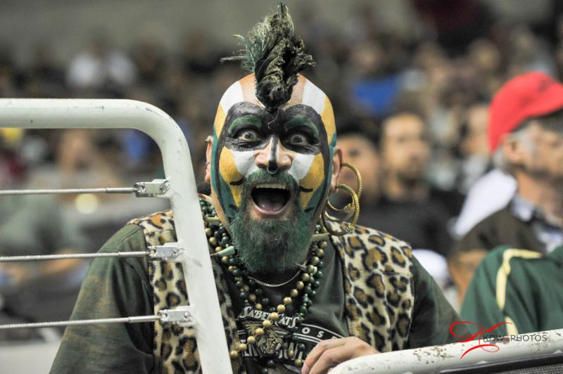 SaberCats fan - 7-11-15 - KW