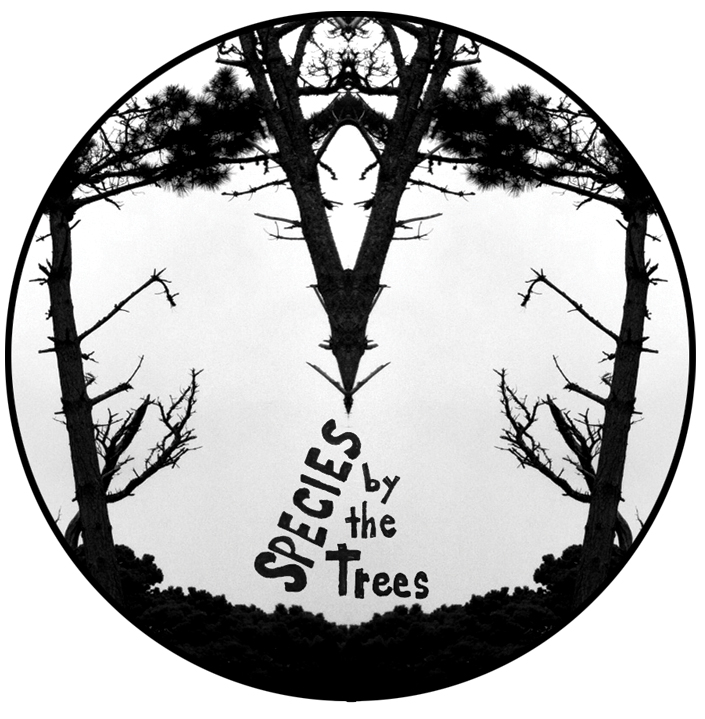 species by the trees pop-up/collab