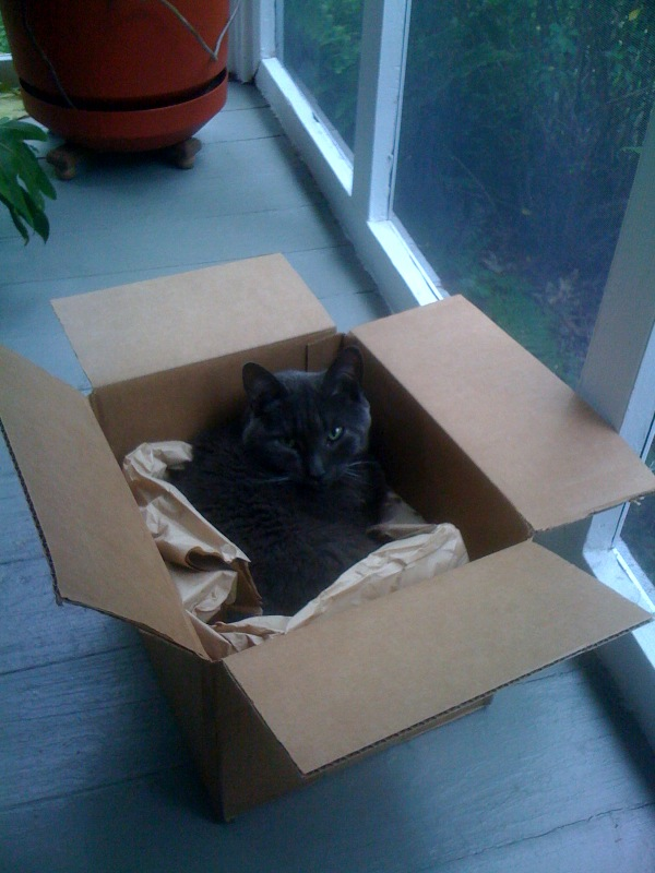 new meaning to the word catbox. ;)
