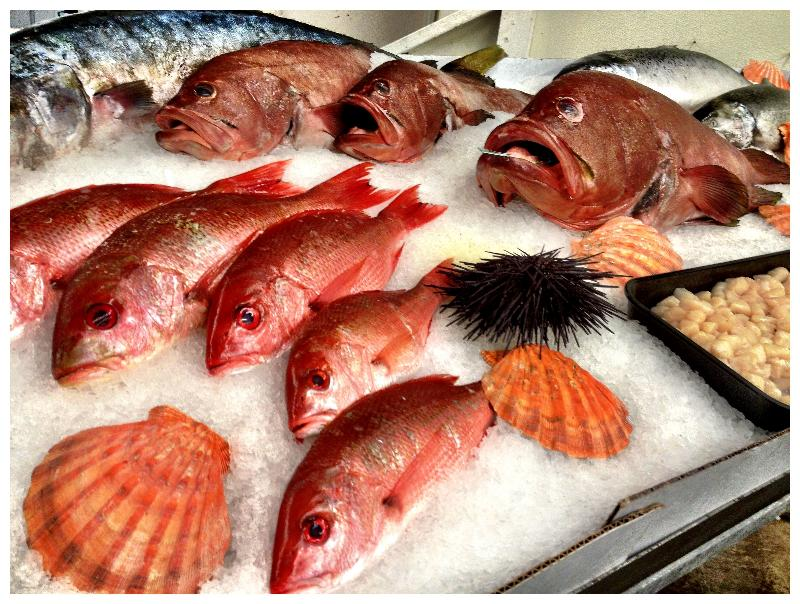 March news from slow food urban san diego for Sustainable fishing definition