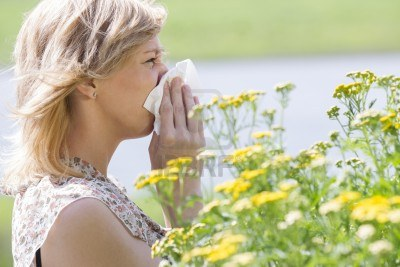 allergy 1